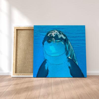 toile-dauphin